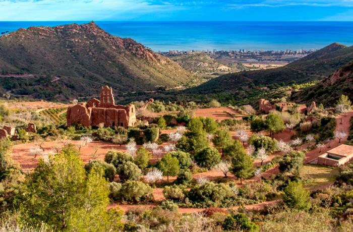 Desierto Las Palmas